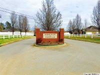 Home for sale: 231 Magnolia Glen Dr., Huntsville, AL 35811
