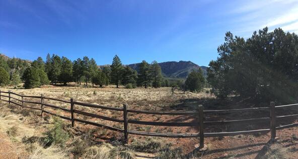 220 W. Zane Grey Cir., Christopher Creek, AZ 85541 Photo 39
