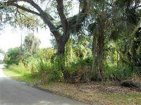 Home for sale: 235 Euclid Pl., La Belle, FL 33935