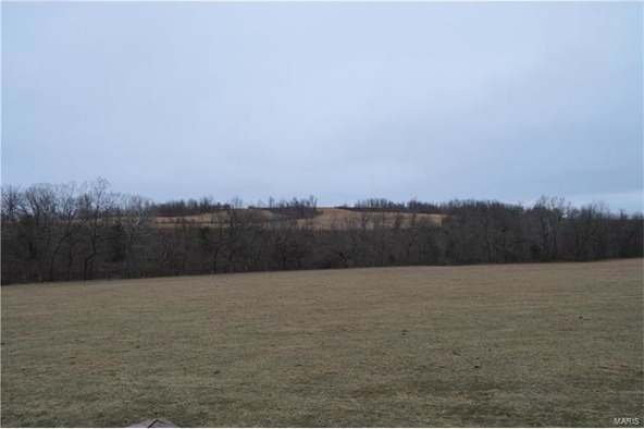 260 State Rd. Yy, Tunas, MO 65674 Photo 30