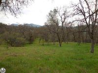 Home for sale: 3.61 Acres Golden Horseshoe, Jamestown, CA 95327
