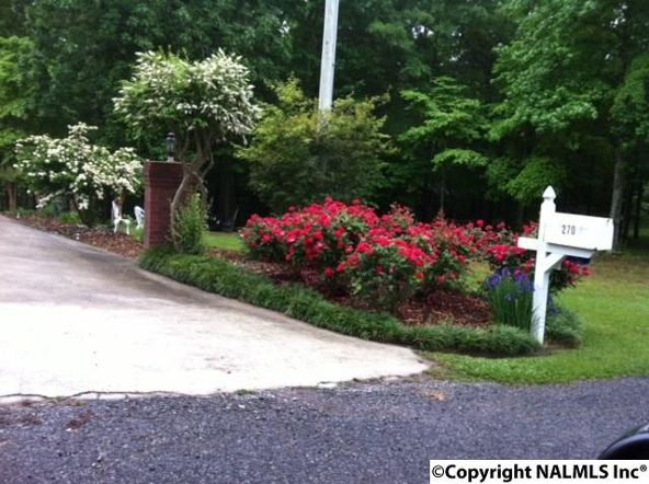 270 County Rd. 599, Leesburg, AL 35983 Photo 23