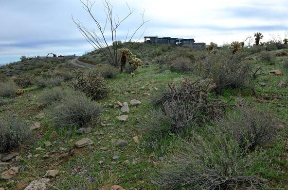13929 E. Big Horn Parkway, Fountain Hills, AZ 85268 Photo 8