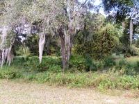 Home for sale: 00 S.W. Quail Run Dr., Dunnellon, FL 34432