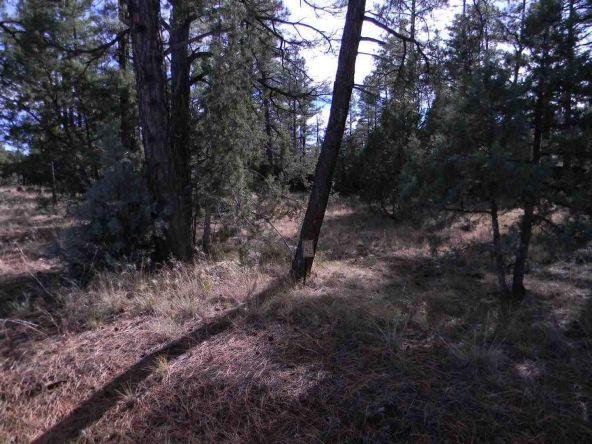 5333 E. N. Elk Springs, Lakeside, AZ 85929 Photo 4