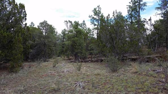 15.64 Ac Near Airport, Overgaard, AZ 85933 Photo 14