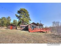 Home for sale: 175 Ironclad View Rd., Allenspark, CO 80510