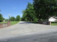Home for sale: 46 Majestic Oak, Murphysboro, IL 62966