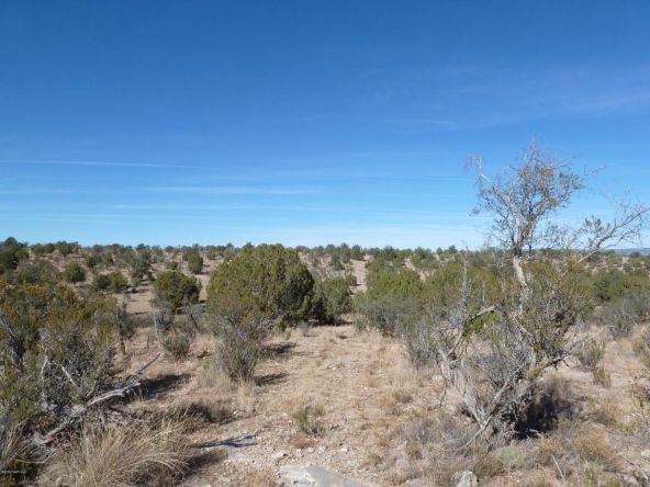 45678 N. Peaceful Hill Rd., Seligman, AZ 86337 Photo 1