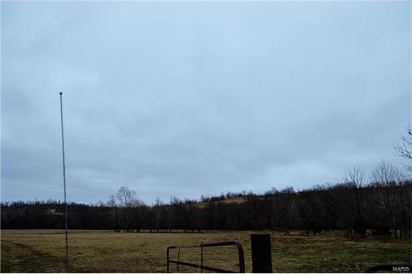 260 State Rd. Yy, Tunas, MO 65674 Photo 45