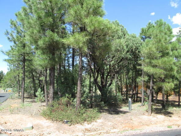 4170 W. Sugar Pine Loop, Show Low, AZ 85901 Photo 2
