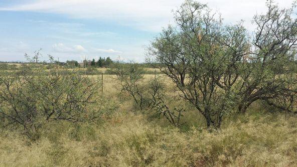 15851 S. Lovell, Benson, AZ 85602 Photo 4
