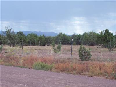 1805 W. Cumberland Parcel J Rd., Ash Fork, AZ 86320 Photo 6