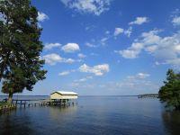 Home for sale: 437 Santee Dr., Santee, SC 29142