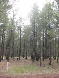 Home for sale: 410 & 460 N. Lake St., Parks, AZ 86018