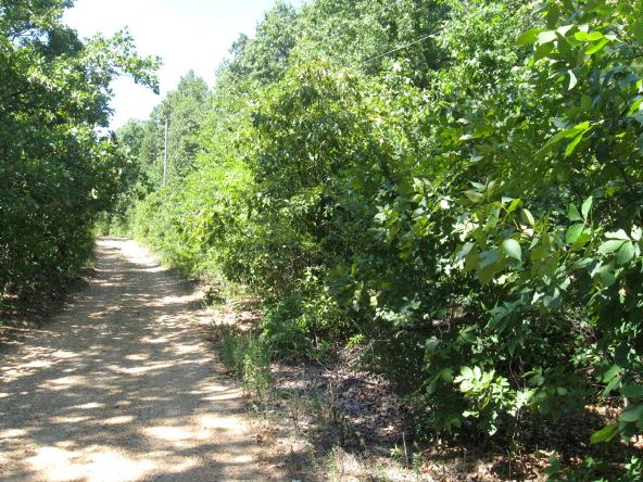16.38 Acres Layer Ln., Harrisburg, AR 72432 Photo 1