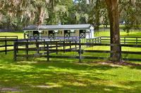 Home for sale: 843 S.E. 131st, Ocala, FL 34480