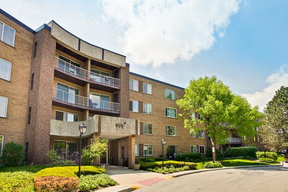 909 East Kenilworth Avenue, Palatine, IL 60074 Photo 13
