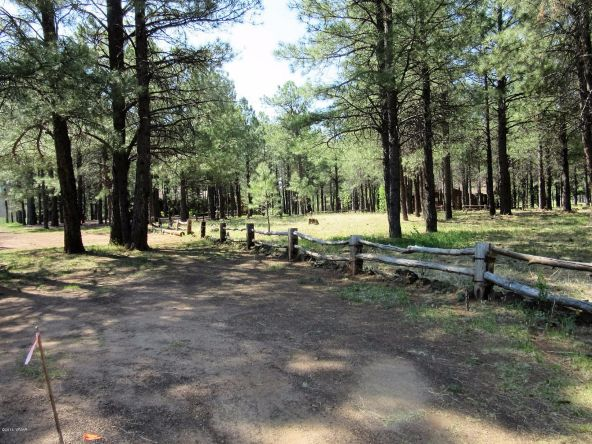 4621 Buck Springs Rd., Pinetop, AZ 85935 Photo 2