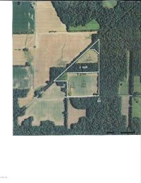 Home for sale: 0000 Unassigned E. Springsteen Rd., Waltonville, IL 62894