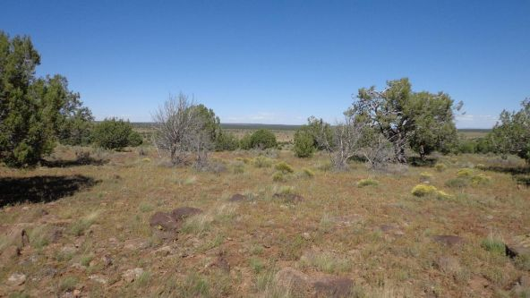 645 Westwood Ranch Lot 645, Seligman, AZ 86337 Photo 18