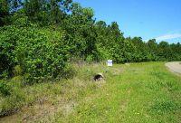 Home for sale: 000 Dreamcatcher, Wallisville, TX 77514