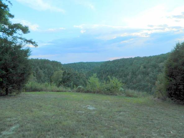 526 County Rd. 139, Bryant, AL 35958 Photo 129
