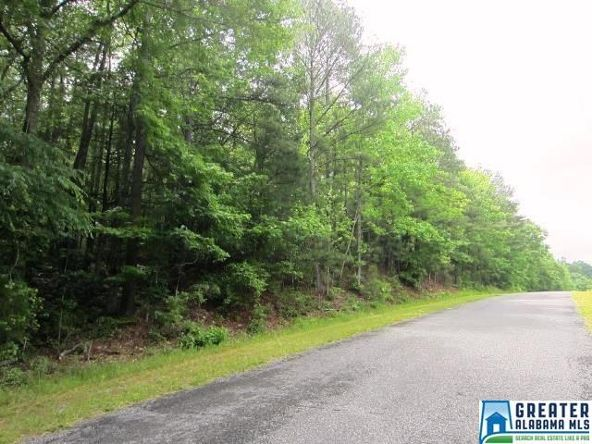40 Acres Oaks Chapel Rd., Goodwater, AL 35072 Photo 7