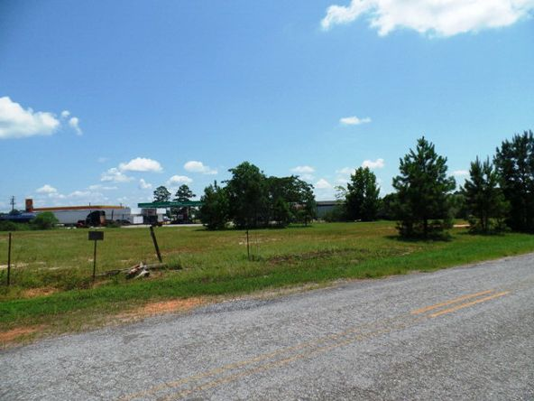 87 Hwy. 84, Monroeville, AL 36460 Photo 4