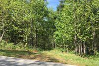 Home for sale: 31 Deep Creek Trl, Arden, NC 28704