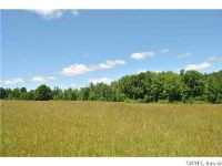 Home for sale: Lot 2 Oswego River Rd., Phoenix, NY 13135