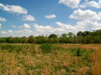 Home for sale: Shoal Creek Trail, Arab, AL 35016