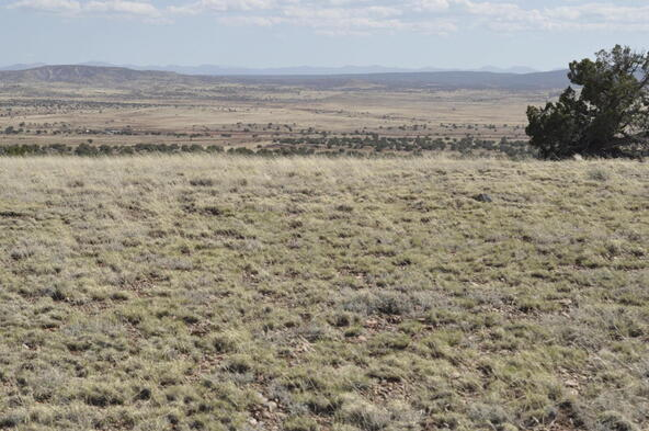 297 Woodridge Ranch, Concho, AZ 85924 Photo 23