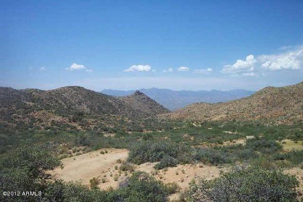 160 S. Eagle Springs Rd., Wikieup, AZ 85360 Photo 5