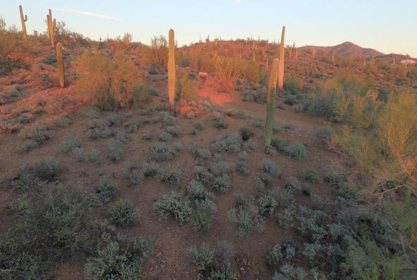 41000 N. 7th St., Phoenix, AZ 85086 Photo 30