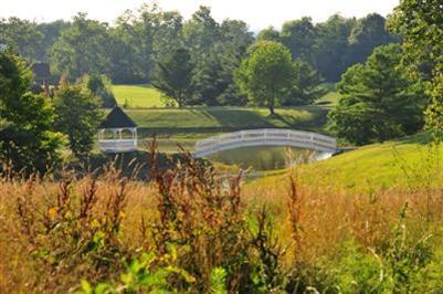 3957 Real Quiet Ln., Lexington, KY 40509 Photo 8