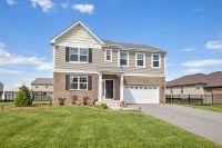 Home for sale: 2141 Bonnieglen Dr., New Lenox, IL 60451
