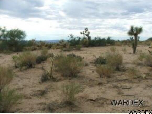 Par 2097 Wild Bill Rd., Yucca, AZ 86438 Photo 12