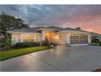 Home for sale: 10823 Cup Dr., San Antonio, FL 33576