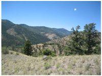 Home for sale: Big Tree Ln., Villa Grove, CO 81149