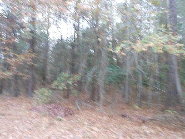 900 Andiron, Sumter, SC 29150 Photo 12