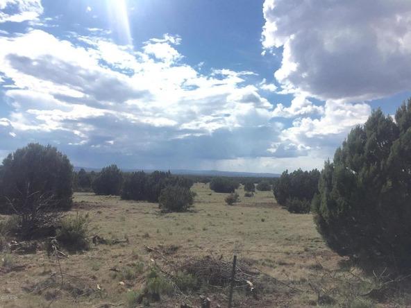 850 Cinder Pit Rd., Show Low, AZ 85901 Photo 31