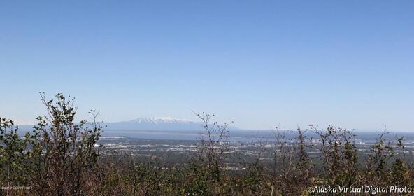 1231 Sultana Ct., Anchorage, AK 99516 Photo 24
