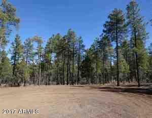 1090 W. Sadler Ln., Lakeside, AZ 85929 Photo 26
