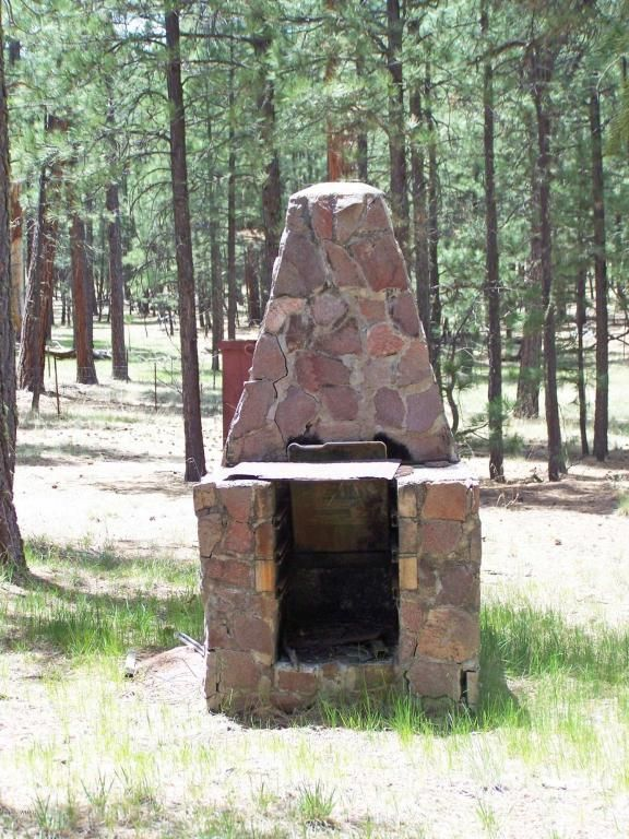 19 County Rd. 2082, Alpine, AZ 85920 Photo 8