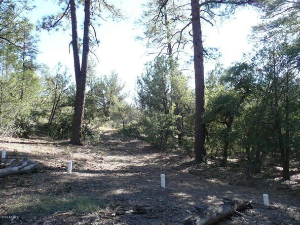 8b N. Chamberlain Trail, Young, AZ 85554 Photo 22
