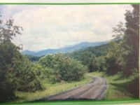 Home for sale: Apple Farm Rd., Bakersville, NC 28705