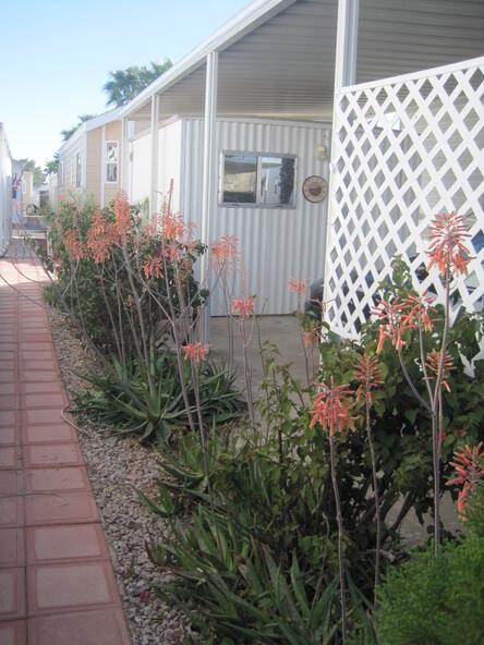 3710 S. Goldfield Rd., # 401, Apache Junction, AZ 85119 Photo 35