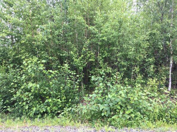 15261 W. Crest Dr., Big Lake, AK 99652 Photo 4