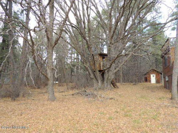 82 Deer Trail, Mormon Lake, AZ 86038 Photo 25